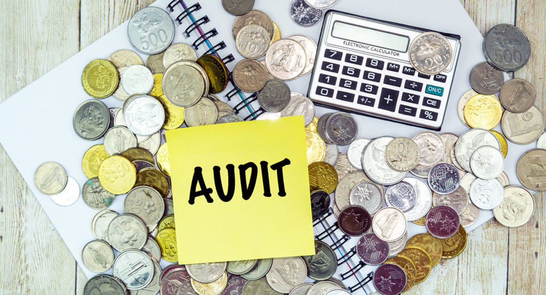 What to Do in Case of an IRS Audit